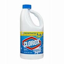 clorox bottle