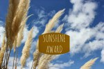 sunshine-award1-e13921416365171